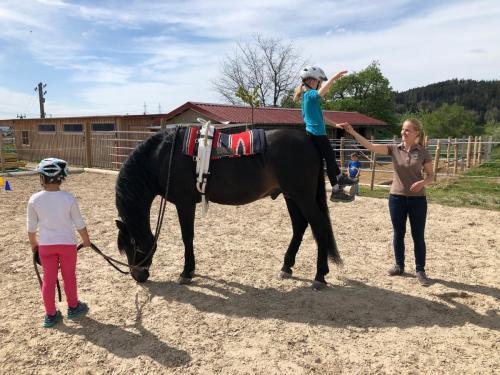 Erlebnis mit Pferd1