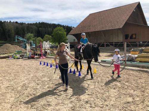 Erlebnis mit Pferd2